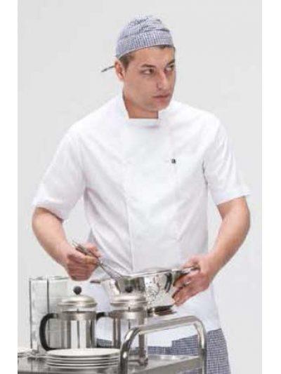 Chaquetilla cocinero manga corta